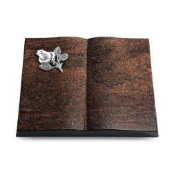 Livre/Aruba Rose 3 (Alu)