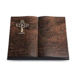 Livre/Aruba Baum 2 (Bronze)