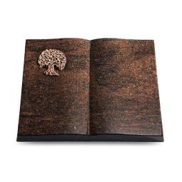 Livre/Aruba Baum 3 (Bronze)