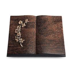 Livre/Aruba Efeu (Bronze)