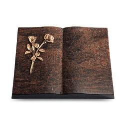 Livre/Aruba Rose 10 (Bronze)