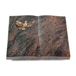Livre/Englisch-Teak Taube (Bronze)