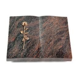 Livre/Englisch-Teak Rose 12 (Bronze)