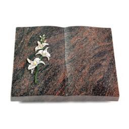 Livre/Englisch-Teak Orchidee (Color)