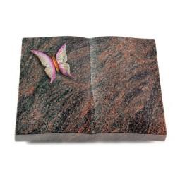 Livre/Englisch-Teak Papillon 1 (Color)