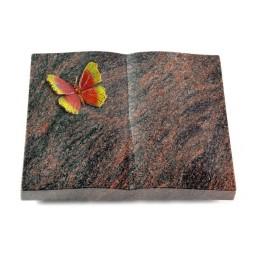 Livre/Englisch-Teak Papillon 2 (Color)