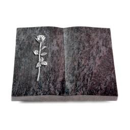 Livre/New Kashmir Rose 12 (Alu)