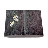 Livre/New Kashmir Orchidee (Color)