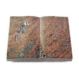 Livre/Orion Rose 7 (Alu)