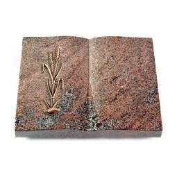Livre/Orion Ähren 2 (Bronze)