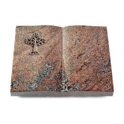 Livre/Orion Baum 2 (Bronze)