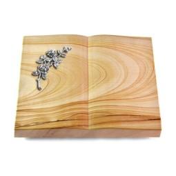 Livre/Rainbow Rose 5 (Alu)
