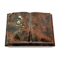 Livre Auris/Indisch-Black Rose 8 (Color)