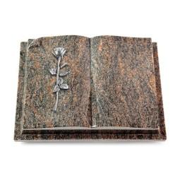 Livre Auris/Aruba Rose 12 (Alu)