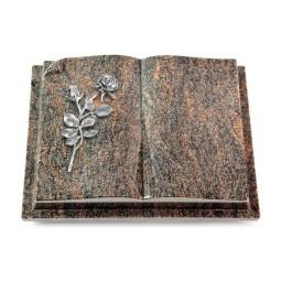 Livre Auris/Aruba Rose 13 (Alu)