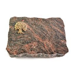 Himalaya Pure Baum 2 (Bronze)