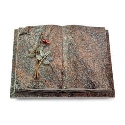 Livre Auris/Orion Rose 5 (Color)