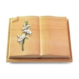 Livre Auris/Rainbow Orchidee (Color)