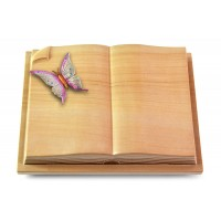 Livre Auris/Rainbow Papillon 1 (Color)