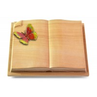 Livre Auris/Rainbow Papillon 2 (Color)