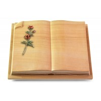 Livre Auris/Rainbow Rose 6 (Color)