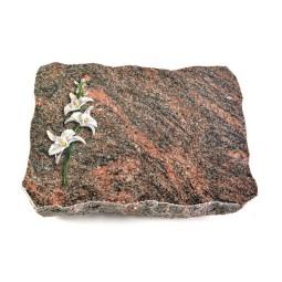 Himalaya Pure Ähren 1 (Bronze)