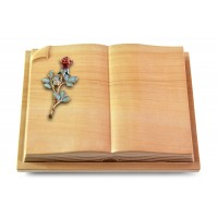 Livre Auris/Rainbow Rose 7 (Color)