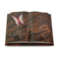 Livre Pagina/Orion Papillon 1 (Color)