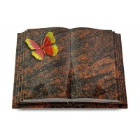 Livre Pagina/Orion Papillon 2 (Color)