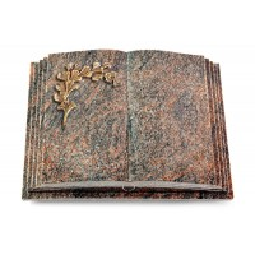 Livre Pagina/Aruba Gingozweig 2 (Bronze)