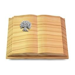 Livre Pagina/Rainbow Baum 3 (Alu)