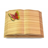 Livre Pagina/Rainbow Papillon 2 (Color)