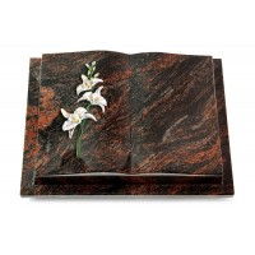Livre Podest/Rainbow Orchidee (Color)