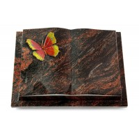 Livre Podest/Rainbow Papillon 2 (Color)
