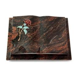 Livre Podest/Rainbow Rose 2 (Color)