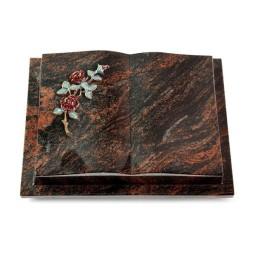 Livre Podest/Rainbow Rose 3 (Color)