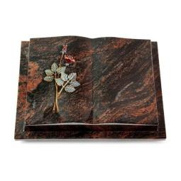 Livre Podest/Rainbow Rose 5 (Color)