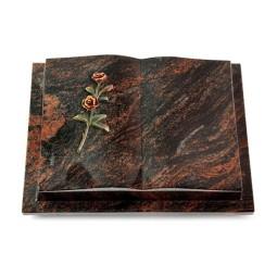 Livre Podest/Rainbow Rose 6 (Color)