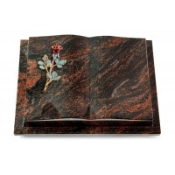 Livre Podest/Rainbow Rose 7 (Color)