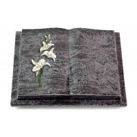 Livre Podest/Indisch Black Orchidee (Color)