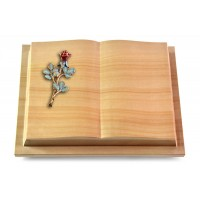 Livre Podest/Rainbow Rose 7 (Color)