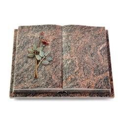 Livre Podest Folia/Aruba Rose 5 (Color)