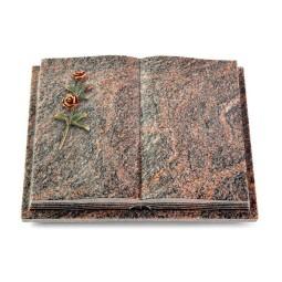 Livre Podest Folia/Aruba Rose 6 (Color)