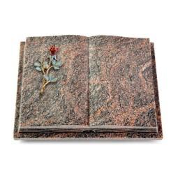 Livre Podest Folia/Aruba Rose 7 (Color)