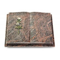 Livre Podest Folia/Aruba Rose 8 (Color)