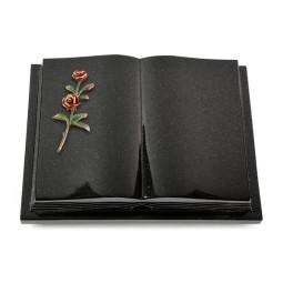 Livre Podest Folia/Himalaya Rose 6 (Color)