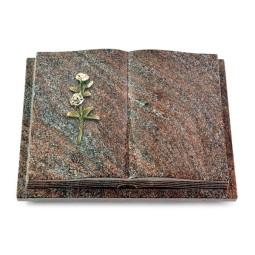 Livre Podest Folia/Orion Rose 8 (Color)