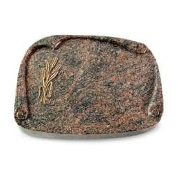 Papyros/Aruba Ähren 1 (Bronze)