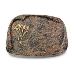 Papyros/Aruba Lilie (Bronze)
