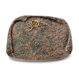 Papyros/Aruba Rose 1 (Bronze)